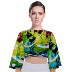New Moon 6 Tie Back Butterfly Sleeve Chiffon Top