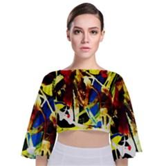 Drama 4 Tie Back Butterfly Sleeve Chiffon Top