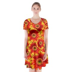 Gerbera Flowers Nature Plant Short Sleeve V Neck Flare Dress by Sapixe
