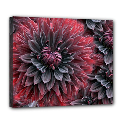 Flower Fractals Pattern Design Creative Deluxe Canvas 24  X 20   by Sapixe