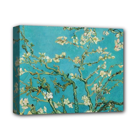 Almond Blossom  Deluxe Canvas 14  X 11