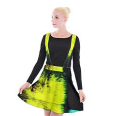 Colors And Fabrics 23 Suspender Skater Skirt by bestdesignintheworld