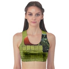 Pumpkins 10 Sports Bra