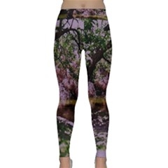Old Tree 6 Classic Yoga Leggings by bestdesignintheworld