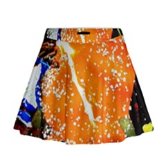 Smashed Butterfly 6 Mini Flare Skirt