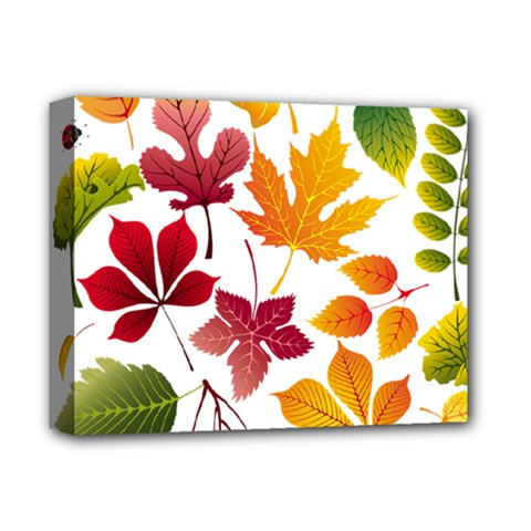Beautiful Autumn Leaves Vector Deluxe Canvas 14  X 11  by Nexatart
