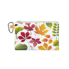 Beautiful Autumn Leaves Vector Canvas Cosmetic Bag (small) by Nexatart