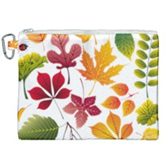 Beautiful Autumn Leaves Vector Canvas Cosmetic Bag (xxl) by Nexatart