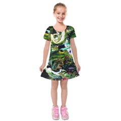 Bow Of Scorpio Before A Butterfly 8 Kids  Short Sleeve Velvet Dress by bestdesignintheworld