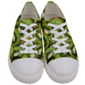 Sliced And Open Kiwi Fruit Women s Low Top Canvas Sneakers View1