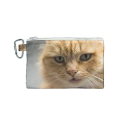 Animal Pet Cute Close Up View Canvas Cosmetic Bag (small) by goodart