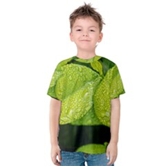 Leaf Green Foliage Green Leaves Kids  Cotton Tee