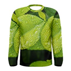 Leaf Green Foliage Green Leaves Men s Long Sleeve Tee