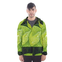 Leaf Green Foliage Green Leaves Hooded Wind Breaker (men) by Simbadda