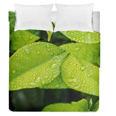 Leaf Green Foliage Green Leaves Duvet Cover Double Side (queen Size)