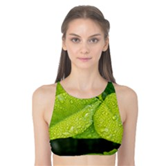 Leaf Green Foliage Green Leaves Tank Bikini Top