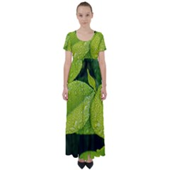 Leaf Green Foliage Green Leaves High Waist Short Sleeve Maxi Dress by Simbadda
