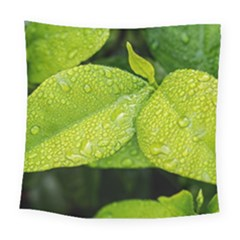 Leaf Green Foliage Green Leaves Square Tapestry (large) by Simbadda
