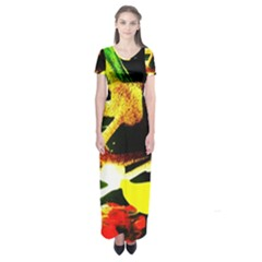 Drama 2 Short Sleeve Maxi Dress by bestdesignintheworld