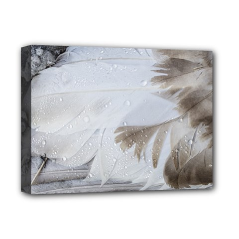 Feather Brown Gray White Natural Photography Elegant Deluxe Canvas 16  X 12   by yoursparklingshop