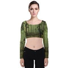 Forest Tree Landscape Velvet Crop Top