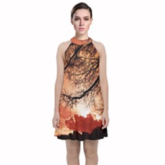 Tree Skyline Silhouette Sunset Velvet Halter Neckline Dress