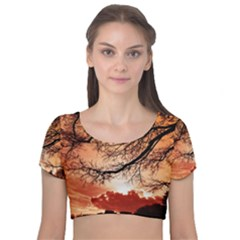 Tree Skyline Silhouette Sunset Velvet Short Sleeve Crop Top