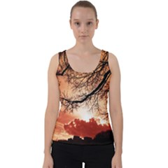 Tree Skyline Silhouette Sunset Velvet Tank Top
