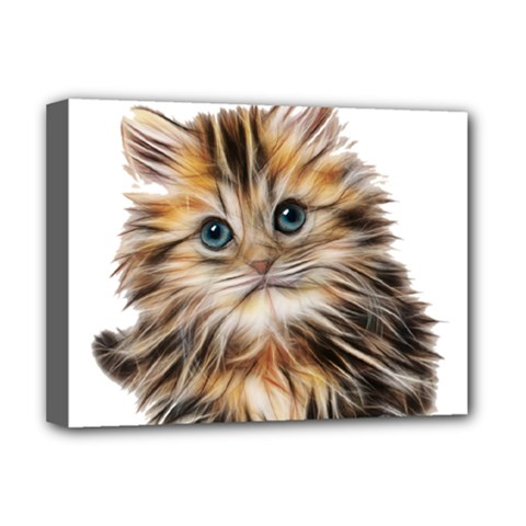 Kitten Mammal Animal Young Cat Deluxe Canvas 16  X 12
