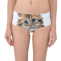 Kitten Mammal Animal Young Cat Mid-waist Bikini Bottoms by Simbadda