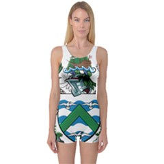 Coat Of Arms Of Ascension Island One Piece Boyleg Swimsuit