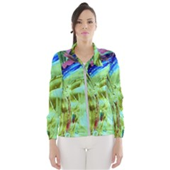 June Gloom 8 Windbreaker (women)