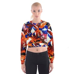 Smashed Butterfly 1 Cropped Sweatshirt