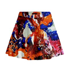 Smashed Butterfly 1 Mini Flare Skirt