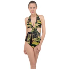 Hot Day In Dallas 25 Halter Front Plunge Swimsuit