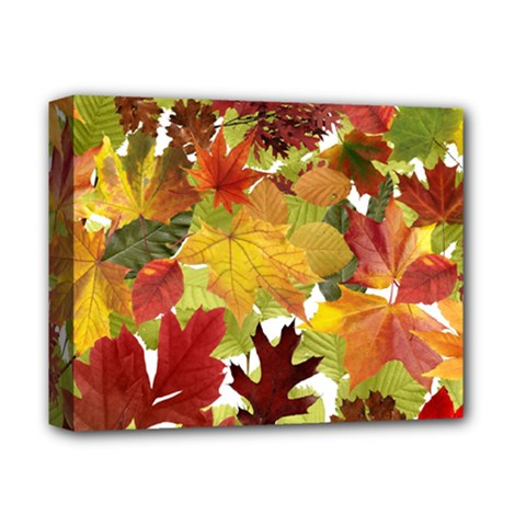 Autumn Fall Leaves Deluxe Canvas 14  X 11