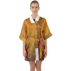 Colors Modern Contemporary Graphic Quarter Sleeve Kimono Robe by Sapixe