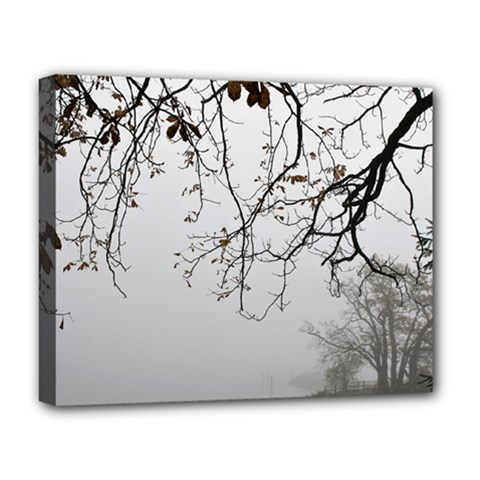 Tree Nature Landscape Deluxe Canvas 20  X 16