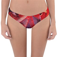 Wine Partner Wild Vine Leaves Plant Reversible Hipster Bikini Bottoms