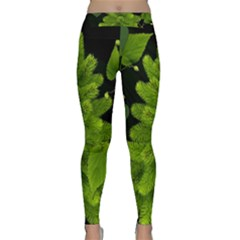 Decoration Green Black Background Classic Yoga Leggings