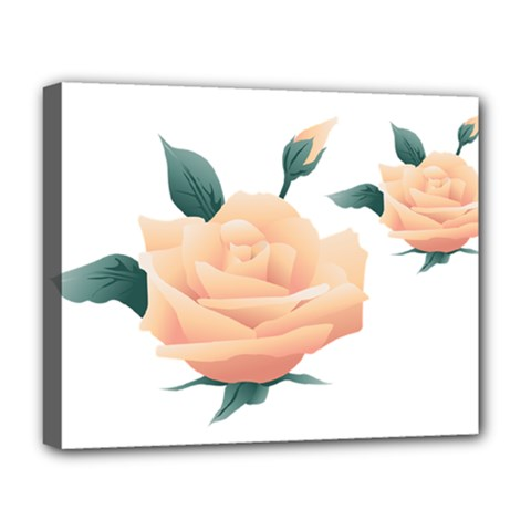 Rose Flower Nature Floral Summer Deluxe Canvas 20  X 16   by Sapixe