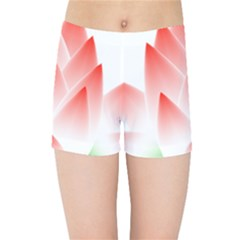 Lotus Flower Blossom Abstract Kids Sports Shorts