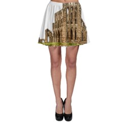 Ruin Monastery Abbey Gothic Whitby Skater Skirt by Sapixe