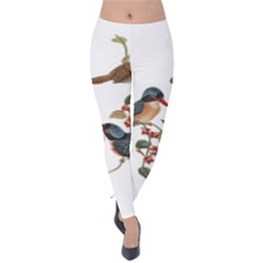 Bird Birds Branch Flowers Vintage Velvet Leggings