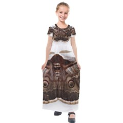 Night Butterfly Butterfly Giant Kids  Short Sleeve Maxi Dress by Sapixe