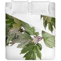 Leaves Plant Branch Nature Foliage Duvet Cover Double Side (california King Size) by Sapixe