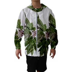 Leaves Plant Branch Nature Foliage Hooded Windbreaker (kids) by Sapixe