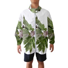 Leaves Plant Branch Nature Foliage Windbreaker (kids) by Sapixe