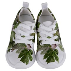 Leaves Plant Branch Nature Foliage Kids  Lightweight Sports Shoes