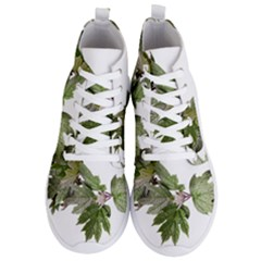Leaves Plant Branch Nature Foliage Men s Lightweight High Top Sneakers by Sapixe